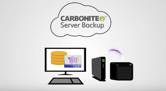 carbonite server backup hybrid